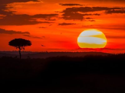 Incredible Kenya Pictures an Amazing Visual Journey
