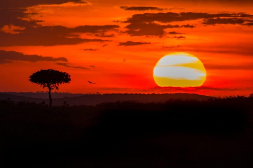 Incredible Kenya Photos, A Visual Journey