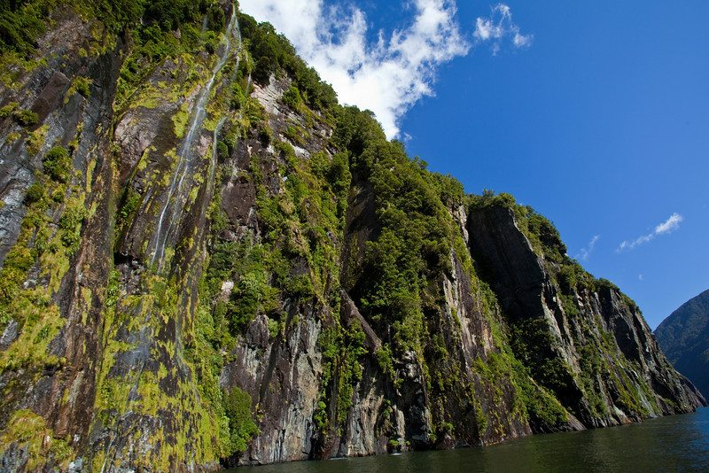 milford sound cruise cliffs