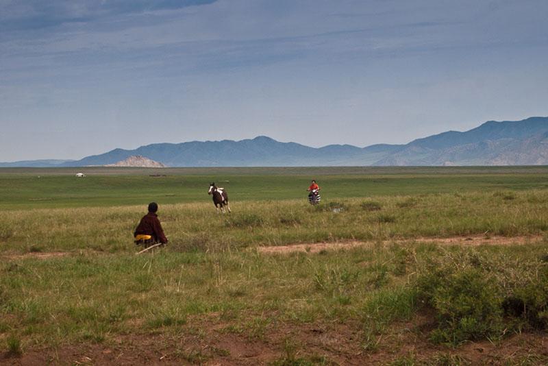 mongolia recap field