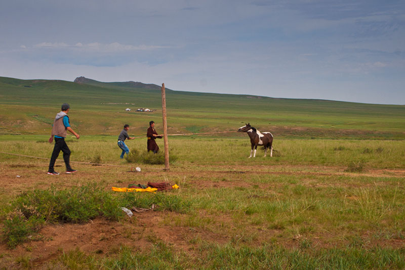 Mongolia – We Made it!