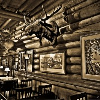 moose-head-canada