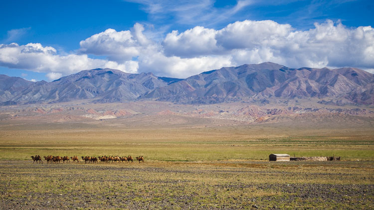 Isolated camp in Mongolia