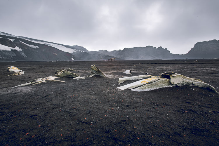 Deception Island In Antarctica
