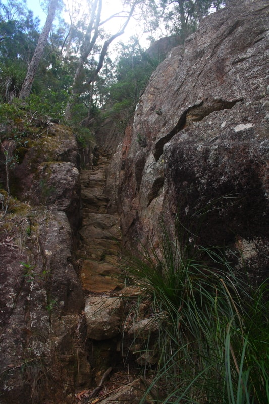 mount barney climb trail