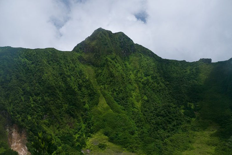Mount Liamuiga Volcano Hike in St  Kitts | The Planet D