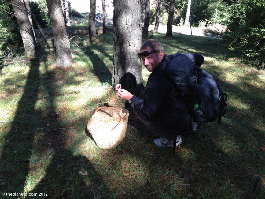 travel blogger dave mushroom hunting