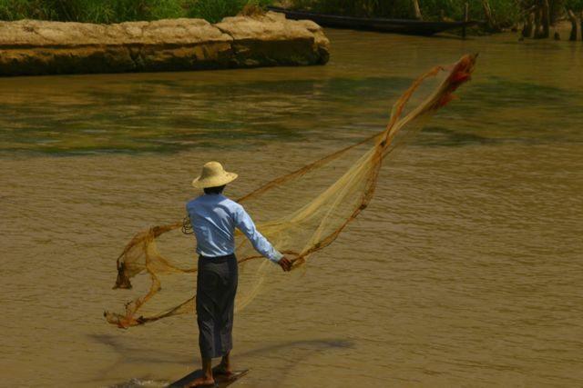 Net Fishing at Inlay Lake, Myanmar