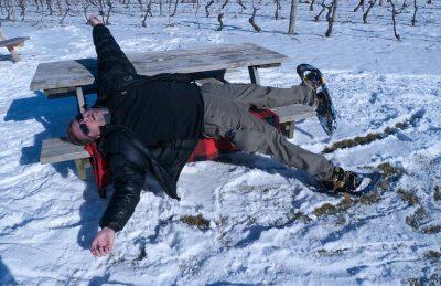 niagara winter winery tour dave