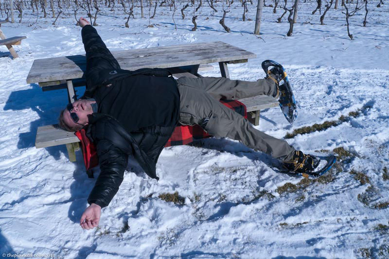 niagara winter winery tour dave