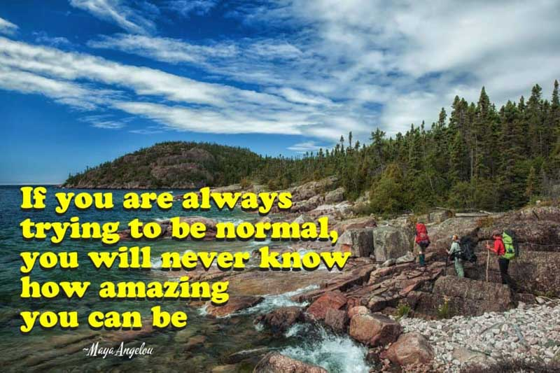 if you are always trying to be normal quote