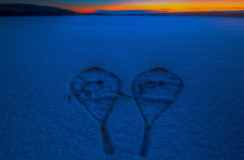 northern ontario snowshoe prints in snow