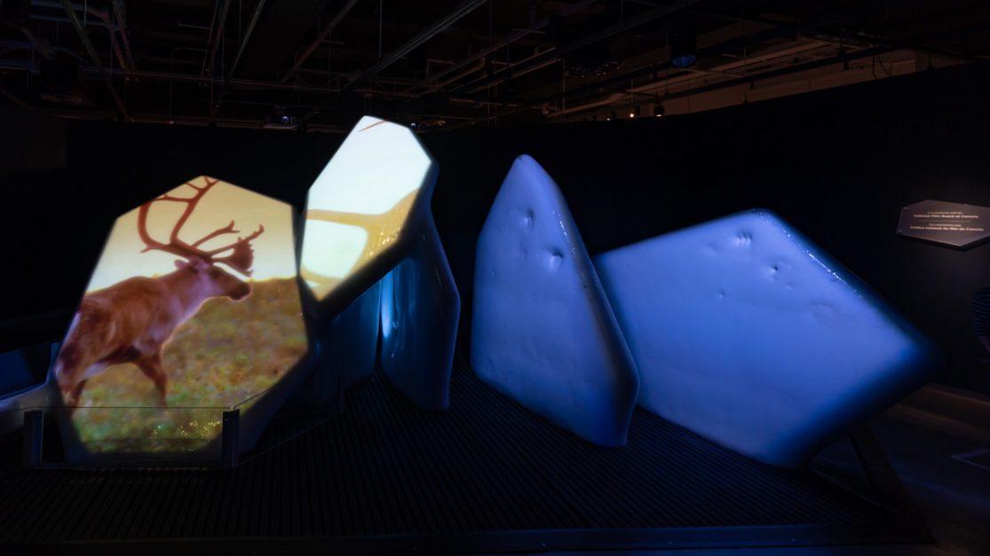 Winter activities ottawa Ice sculpture Museum of Nature