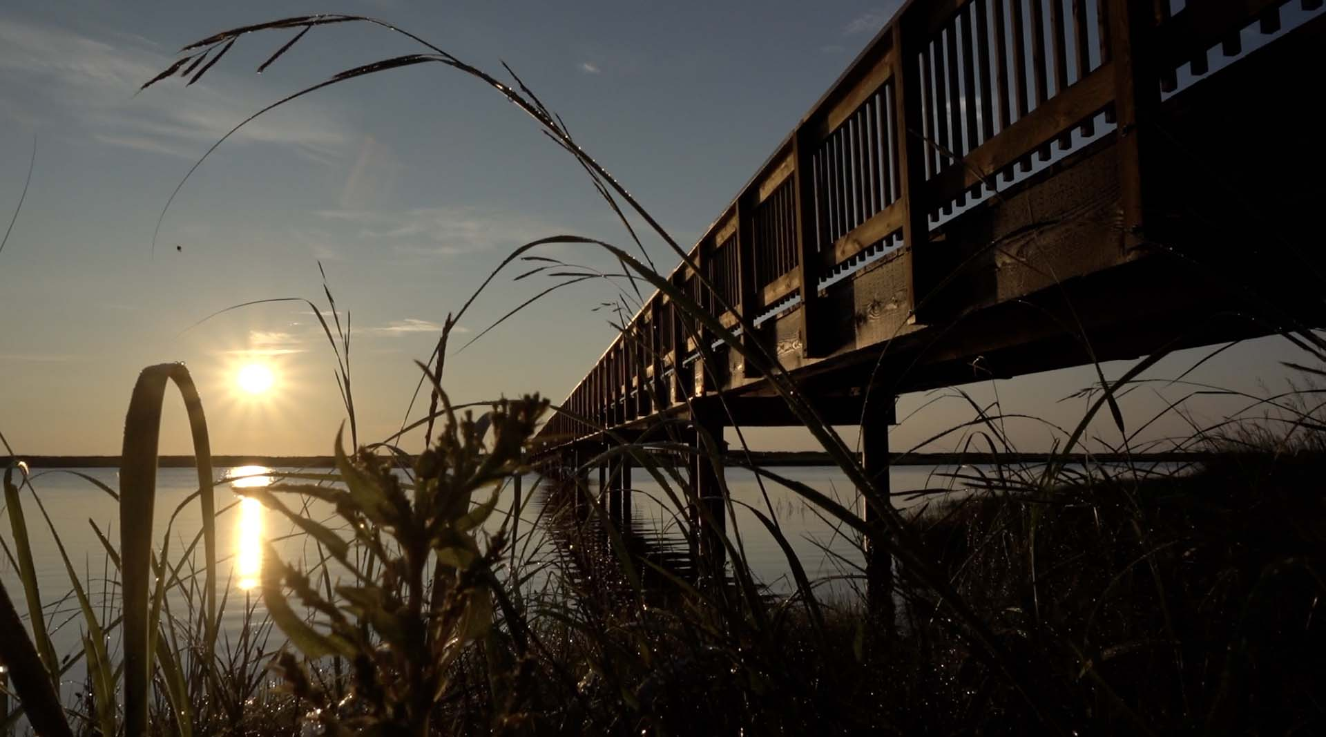 wooden walkway at sunrise