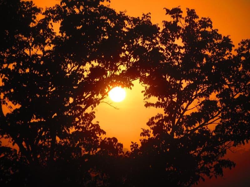 peruvian rainforest sunset