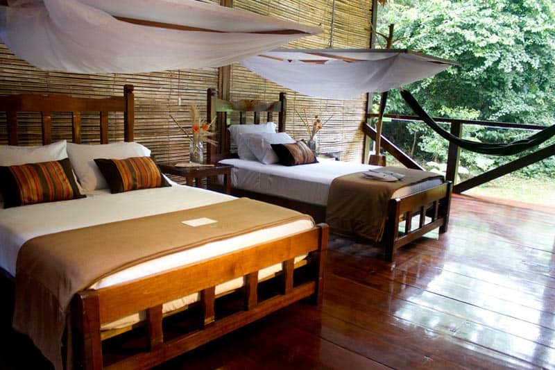 sustainable lodging in the rainforest of peru