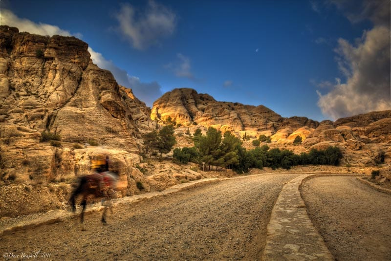 horse running to petra
