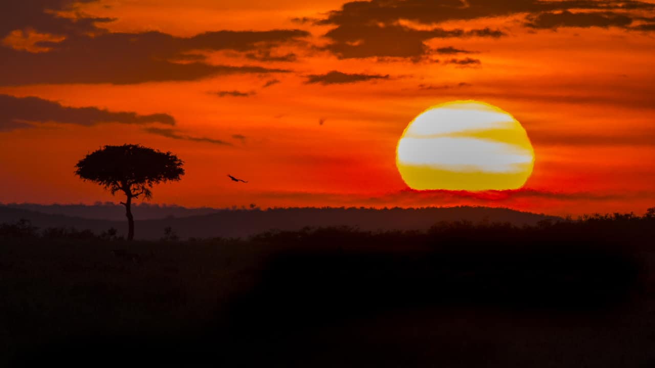 photography tours 2018 tanzania africa sunset serengeti