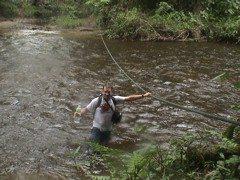 river crossing borneo