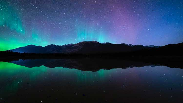 auroa borealis in Jasper national park