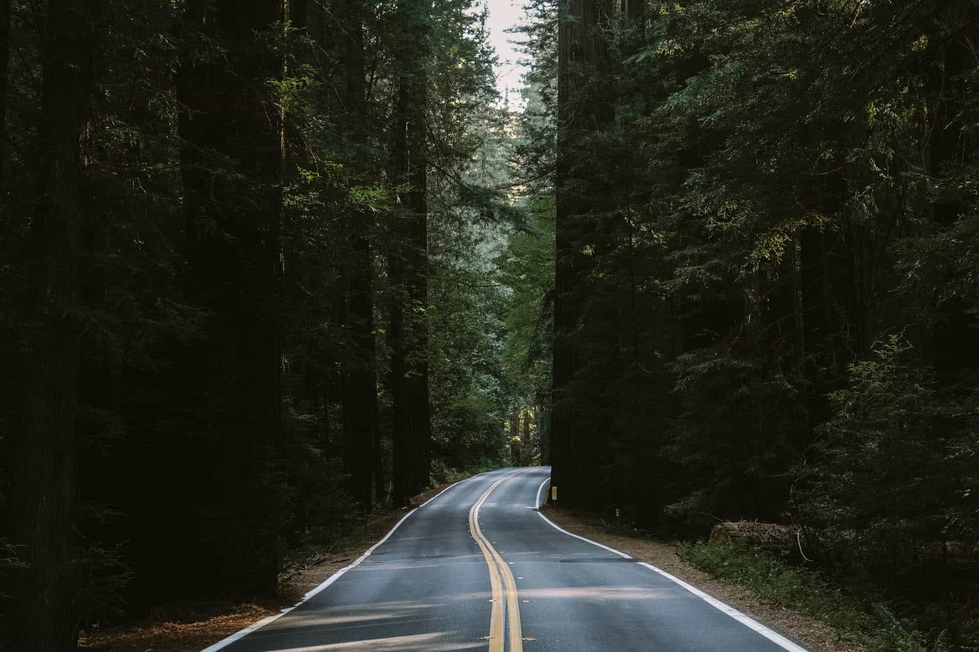iconic drives in northern california