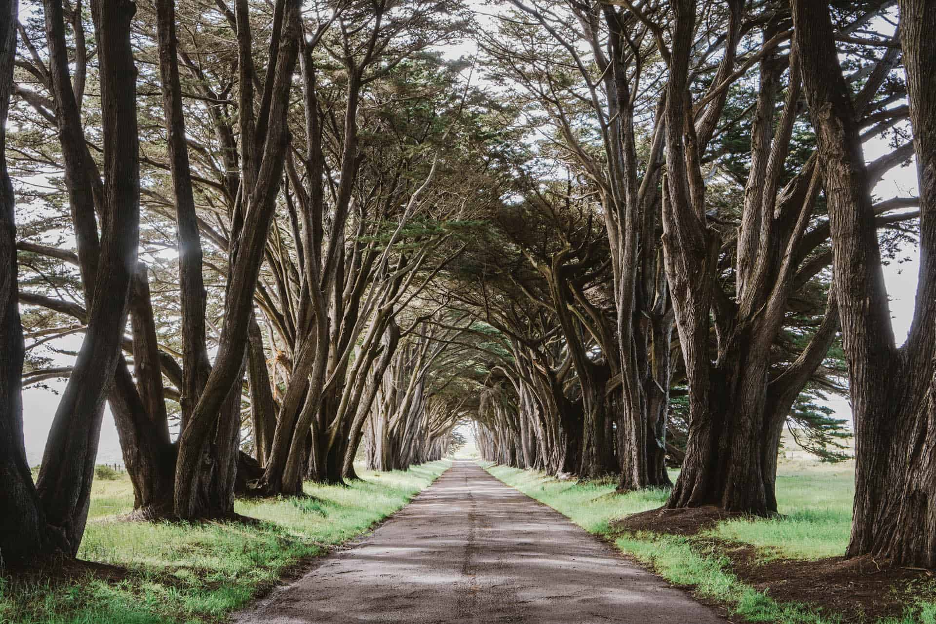 places to visit in northern california point reyes