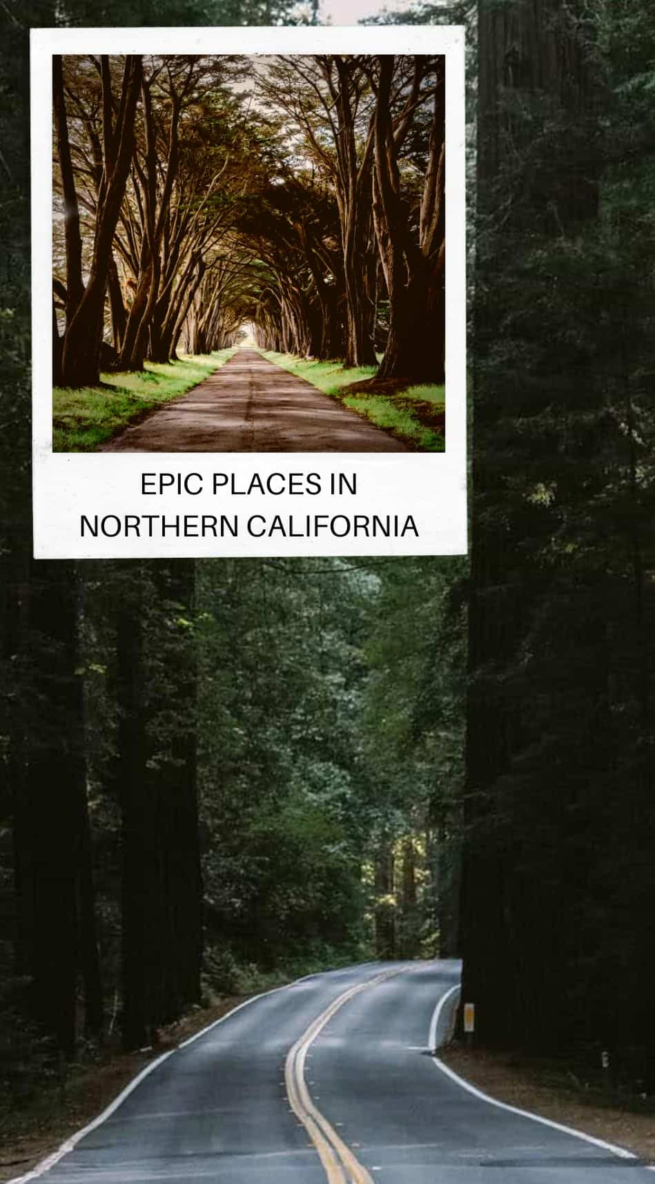 Epic Places to Visit in Northern California