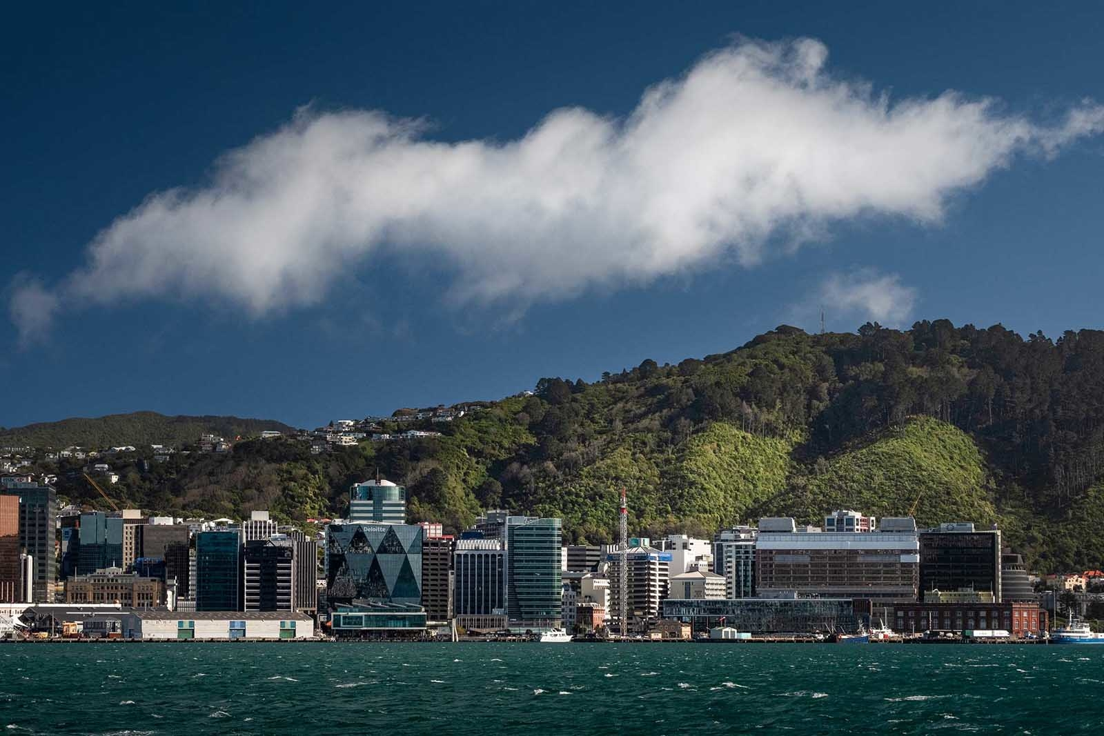 best places to visit in wellington new zealand