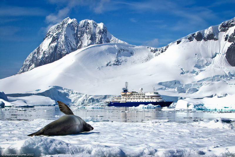 pleneau bay antarctica seal ship