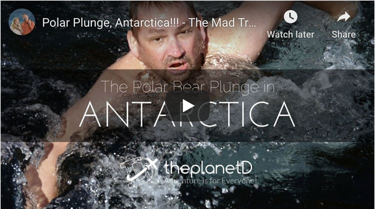 the polar plunge in antarctica