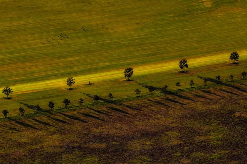 farm fields queensland