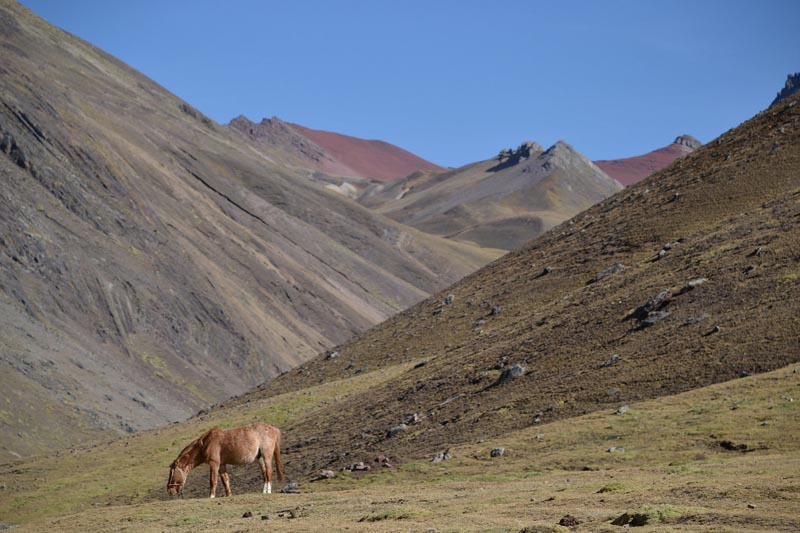 rainbow mountain horse trek
