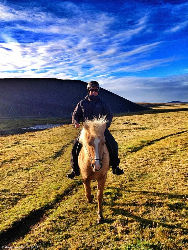riding an iceland horse