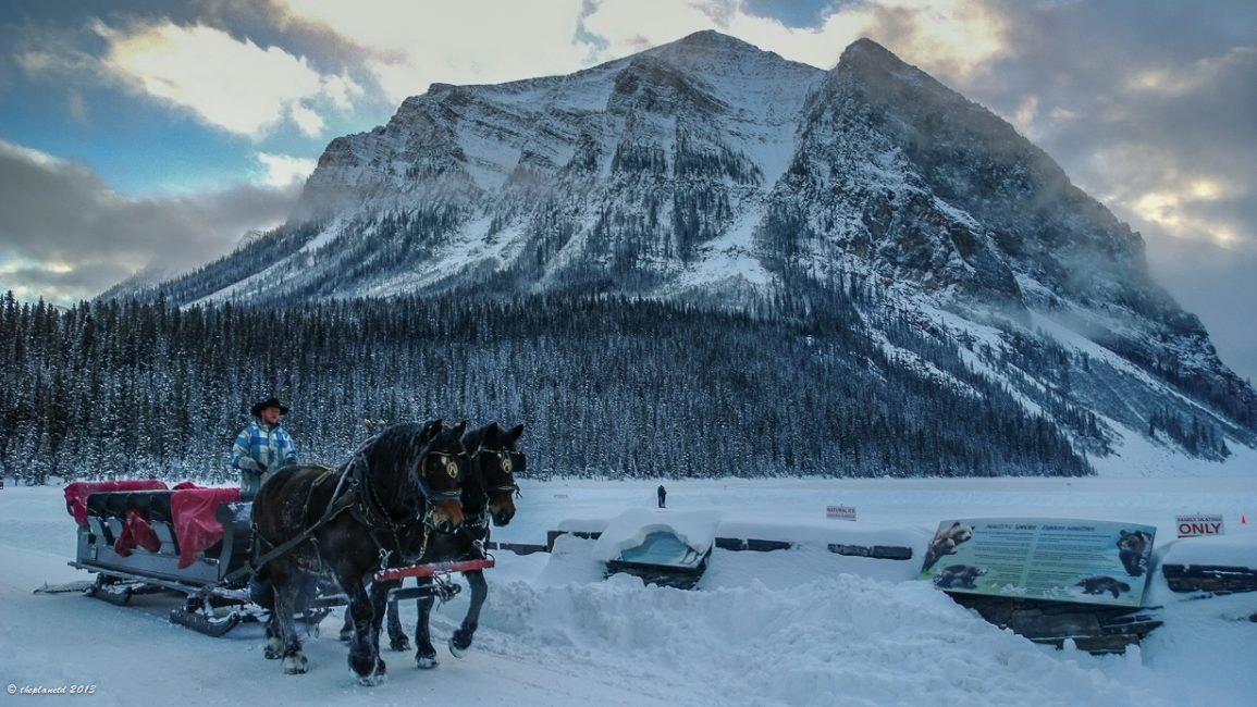 A Sleigh ride around Lake Louise is a great canadian winter activity