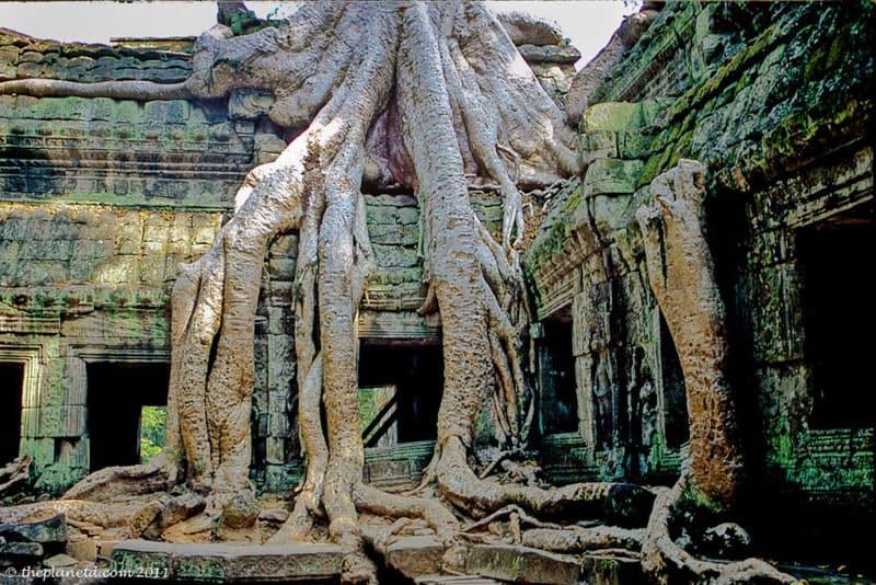 ruins of the world angkor wat