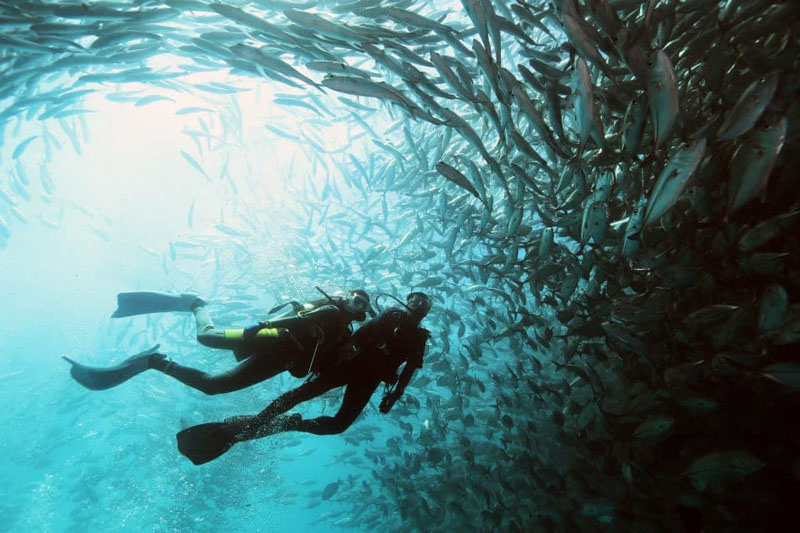 6 Great Sabah Diving Sites Beyond Sipadan