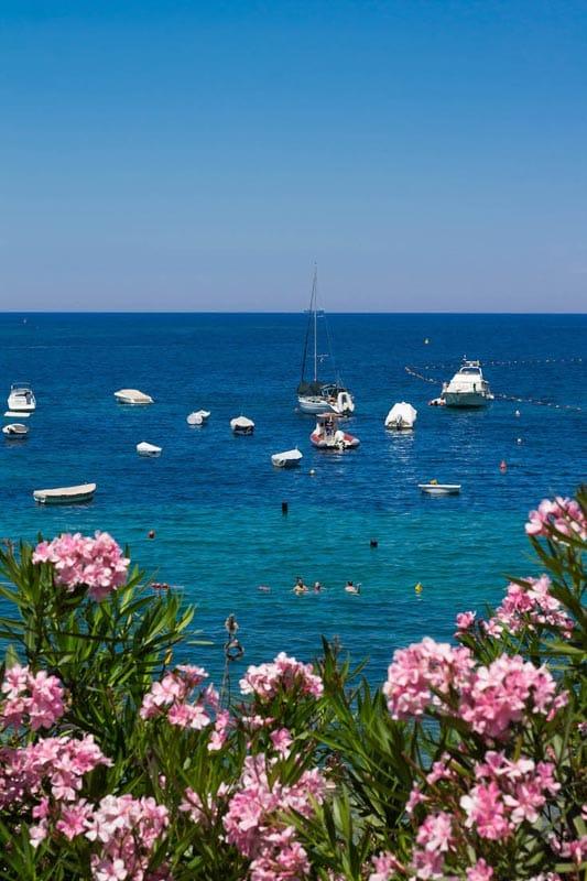 sailing adventures in malta