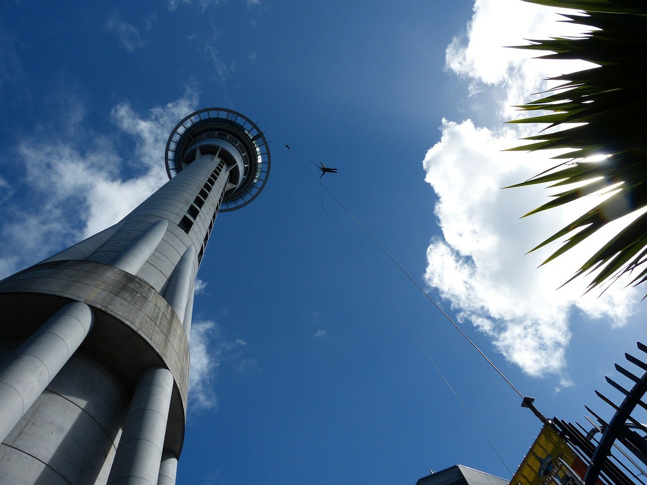 things to do in auckland sky tower