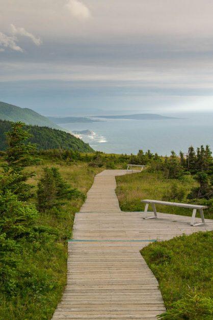skyline trail wooden path