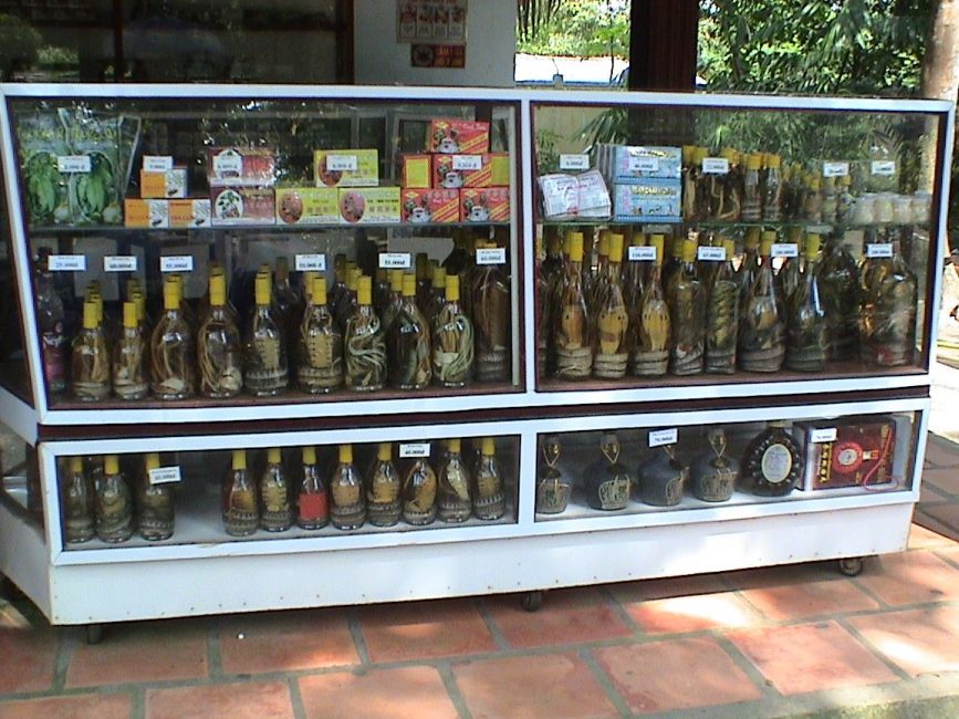 Snake wine on display at Cuchi Tunnels
