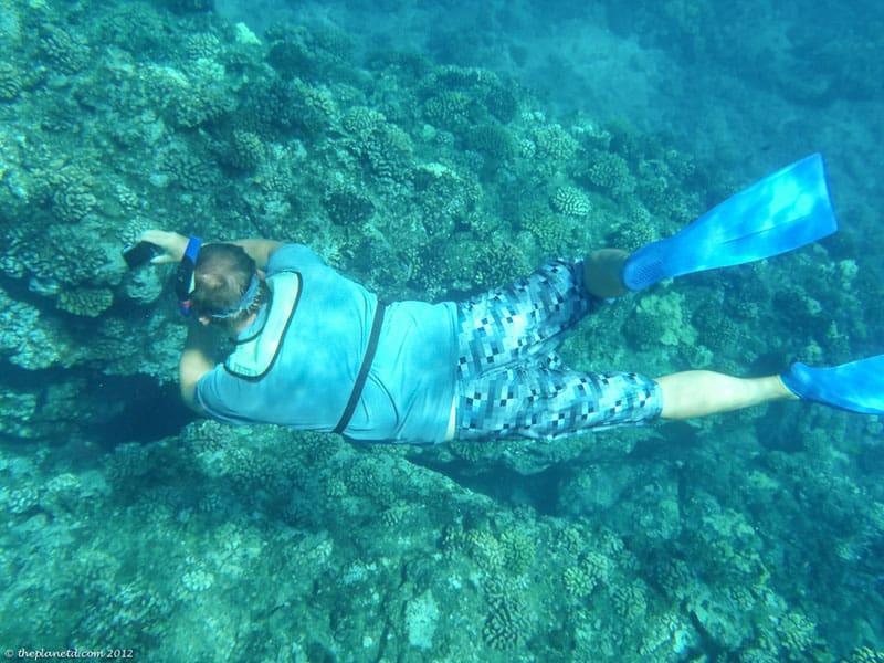 lanai snorkel trips reefs