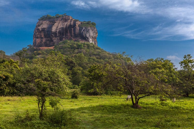 21 of the Very Best Things to do in Sri Lanka