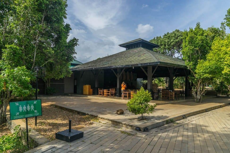 cinnamon resort in yala national park