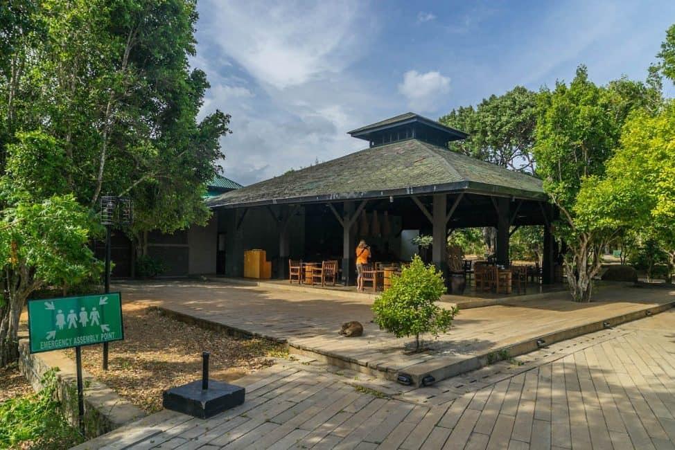 cinnamon resort in yala national park