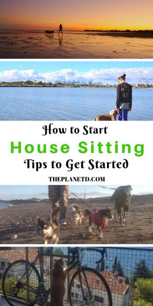 how to start house sitting