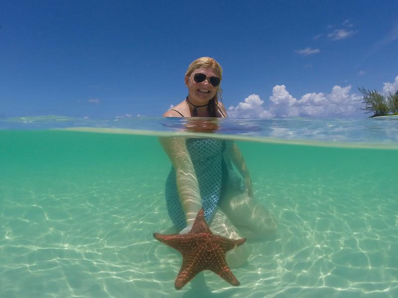 stingray city starfish