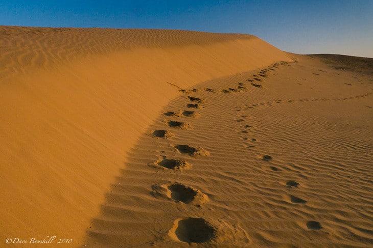 surreal desert moments sand