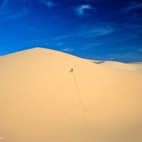 surreal-travel-desert-moments-2-L