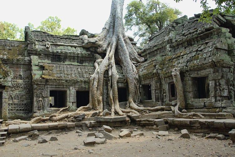ta phrom temple | angkor wat travel