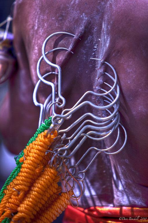thaipusam festival malaysia asia hooks